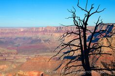 Gand Canyon - Mira Terra Travel Blog: Road Trip for Cameras: Arizona National Parks & Monuments