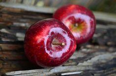 μηλόπιτα, μήλα , κέικ, γλυκό , συνταγή με μήλα