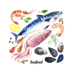 Watercolor Set of Sea Food with Trout, Salmon and Mussels Drawn by Hand on a Whi by Monash : Watercolor Food, Watercolor Animals, Watercolor Background, Watercolor Illustration, Watercolor Paintings, Watercolours, Easy Food Art, Food Art For Kids, Diy Food