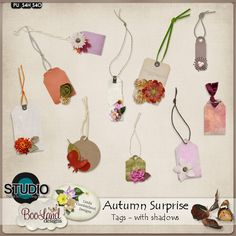 Autumn Surprise Tags Pack A collaboration by #LindaCumberland Designs and #Booland Designs.  Leaves slowly fall from the branch of the tree, nestling soft near a pumpkin or seed. #theStudio #digiscrap