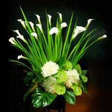 スタンド花 ハイグレード [white] Daniel Ost, Flower Decorations, Table Decorations, Large Flower Arrangements, Floral Design, Art Floral, First Holy Communion, Calla Lily, Amazing Flowers