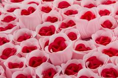 100 Rose Soap Flowers Red Inside and Pink Outside. For Only $69.99