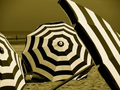 beach picture - beach umbrellas in Belgium, picture by YvesLorononpermanentvacation