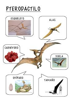 Dinosaurs Preschool, Dinosaur Activities, Dinosaur Crafts, Preschool Science, Dinosaur Party, Activities For Kids, Spanish Classroom Activities, Flags Europe, Montessori Materials
