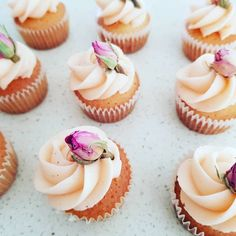 Cupcakes: Mini cupcakes with rose buds. Rose Buds, Mini Cupcakes, White Chocolate, Frost, Muffins, Vanilla, Treats, Desserts, Sweet Like Candy