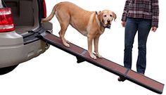 I just bought this and love it. Pet Gear Tri-Fold Ramp 71 inch Pet Ramp supports 200LBS,Chocolate, Full Length . you can see what others said about it here http://bridgerguide.com/pet-gear-tri-fold-ramp-71-inch-pet-ramp-supports-200lbschocolate-full-length/
