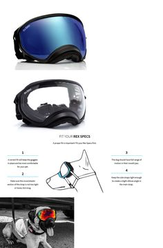 Sunglasses and Goggles 116376: Rex Specs Dog Goggles Large Black Frame Blue Lens Uv400 Protective Eye Goggles -> BUY IT NOW ONLY: $79.95 on eBay!
