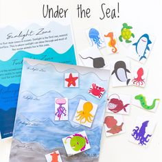 Learn about the 4 main ocean zones and the creatures that live here in this booklet. It includes a lesson page, colouring page and two pages of ocean creatures for your child to sort into zones. An educational and hands-on activity for children to learn about oceans and its vast depths. Ocean Projects, Projects For Kids, Art Projects, Ocean Activities, Hands On Activities, Ocean Art, Ocean Life, Ocean Zones, Marine Biology