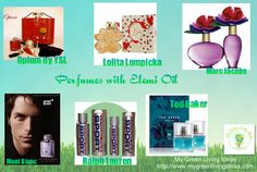perfumes with elemi oil