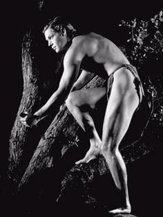 Johnny Weissmuller (Tarzan) Photo by George Hurrell c. 1932. Look at that bod!
