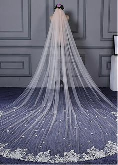 In Stock Wonderful Tulle Wedding Veil With Lace Appliques & Comb - Adasbridal.com
