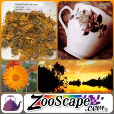 Take a moment for yourself.   You deserve it.   Marigold tea will get you there.   http://www.zooscape.com/cgi-bin/maitred/GreenCanyon/questc101120/r18   #marigold #calendula #tea #herbal #tealife #teacup #teewoche #teatray #love #instagood #follow #cute #photooftheday #tbt #followme #beautiful #happy #picoftheday #instadaily #food #swag #amazing #igers #instalike #bestoftheday #like4like #friends #instamood