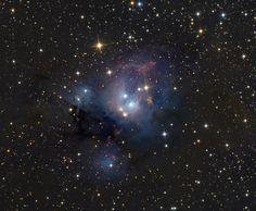 http://apod.nasa.gov/apod/image/1110/NGC7129_schedler_c70.jpg
