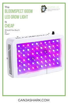 The Bloomspect LED grow light, as it is quite cheap, is quite tempting. However, is this grow light worth buying. Cheap Grow Lights, Indoor Grow Lights, Best Led Grow Lights, Grow Lights For Plants, Indoor Hydroponic Gardening, Aquaponics Diy, Hydroponics System, Lighting Companies, Grow Tent