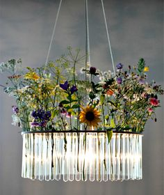 "Test Tube Chandelier from ""Silly Chandeliers"""