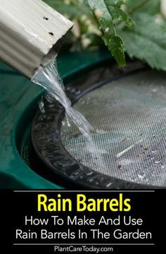 Rain barrel a simple container, often 50 -80 gallons in size, used to harvest and store captured rainwater draining from a roof. Eco Friendly [LEARN MORE]