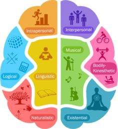 Image result for learning styles