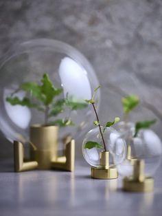 Hett just nu: Vackra vaser för dina sticklingar att gro i Incense, Fat, Table Decorations, Interior, Home Decor, Decoration Home, Indoor, Room Decor, Interiors