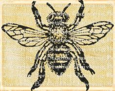Bee Insect Bug Digital Graphic Download-fabric transfers decals decoupage burlap pillows tote bags greeting cards scrapbooking no 0071