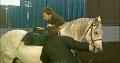 "David Tennant and horses (with apologies to David for including that Casanova outtake at the end) Excerpts from the DVD commentary for The End of Time Part 1: ""David Tennant: I'm a bit allergic to horses. Catherine Tate: Oh are you? DT: So it wasn't..."