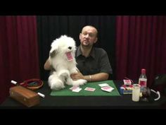 HOw to use a puppet without being a ventriloquist - YouTube