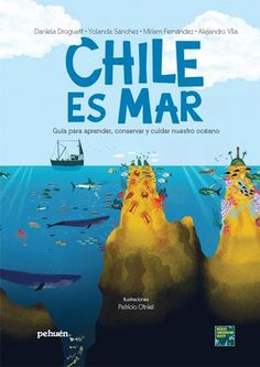 Chile es mar Chile, History, Books, Movie Posters, Cover, Take Care, Nail, Libros, Livros