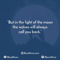 #raremirror #raremirrorquotes #quotes #like4like #likeforlike #likeforfollow #like4follow #follow #followforfollow #life #lifequotes #love #lovequotes #relationship #relationshipquotes #light #moon #wolves #always #call #back