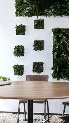 Das Urban Jungle Feeling mit Pflanzen Wanddeko in Dein Zuhause zu bringen, geht ganz einfach. Wir zeigen Dir Ideen für eine Plant Wall und unsere Pflanzenbilder-Favoriten. Free Plants, Cool Plants, Moss Wall Art, Real Nature, Living Room Lounge, Forest House, Plant Wall, Interior Styling, House Design