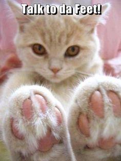 Talk to da Feet!