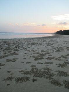 Little Andaman Island (North Andaman Island, India) - Top Tips Before You Go - TripAdvisor Andaman And Nicobar Islands, Trip Advisor, India, Sunset, Beach, Water, Tips, Outdoor, Gripe Water