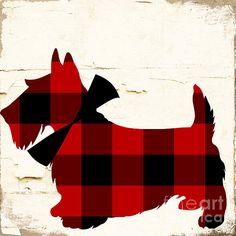 Trademark Art 'Scotty I' by Color Bakery Graphic Art on Wrapped Canvas Artist Canvas, Canvas Art, Canvas Prints, Canvas Size, Westies, Corgis, Tartan Plaid, Wrapped Canvas, Illustration