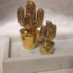 Nyhet på R.O.O.M. Förgyll ditt hem med en minikaktus och vacker marmor. Kaktus liten 89kr, stor 129kr. Marmorbricka 30x15x4cm 399kr. #roombutiken #nyhetpåroom #marble #marmor #kaktus