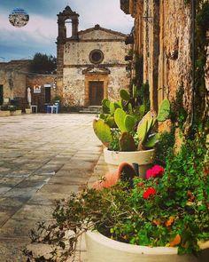 Italian Beauty, Sicily Italy, Ancient Ruins, Catania, Cactus Flower, Potpourri, Tour, Bella, Adventure Travel