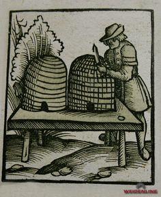 weidenline.de - Mediathek Bilder - Fotos zur Ausstellung Mönche Bienen Bücher
