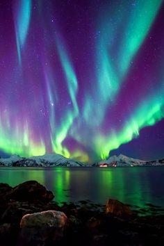 Northern Light Skulsfjord Tromsø by Ronny Mikkelsen / lovetotravel-sh.blogspot.com #попробуйэтотмир