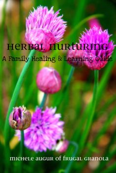 ebook - healing the body naturally w/herbs