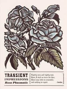 """Martin Mazorra's Language of Flowers, Rose series,Color Woodcut and Letterpress print, 18"""" x 24"""", on French's 100 lb. Cover, Insulation Pink. Handcut, Handprinted with moveable type. Signed. Unframed. Fits in a standard size frame. Edition of 20."""