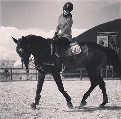 #horse #love #beauty #black #white #balance #loyal