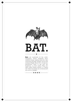 Animals Design Book by Gloria Ciceri, via Behance