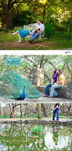 Austin Engagement Photo Locations - Mayfield Park