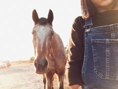 Horses n overalls