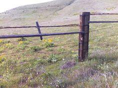 Country Fence by Loving-Simpkin.deviantart.com on @DeviantArt
