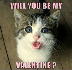Well, will you?