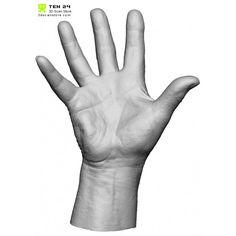 HandScan03_spread6-700x700.jpg (700×700)