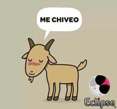 Me chiveo www.conamoreclipse.com