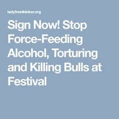 Sign Now! Stop Force-Feeding Alcohol, Torturing and Killing Bulls at Festival