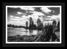 Lake Almanor Framed Print featuring the photograph Monochrome Remnants by Marnie Patchett
