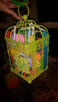 Bird cage forager