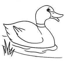 KleuterDigitaal  kp gans 03  Vogels Kleurplaten  Pinterest