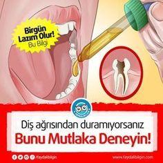 Diş ağrısından duramıyorsanız bunu mutlaka deneyin Faydalı Bilgin If you can't stop toothache, try it. Healthy Beauty, Healthy Tips, Tooth Pain, Tooth Ache, Der Bus, Natural Health Remedies, Fashion Moda, Alternative Medicine, New Tricks